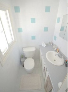 fort st john home owners bathroom